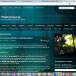 Gamla webbkyrkan